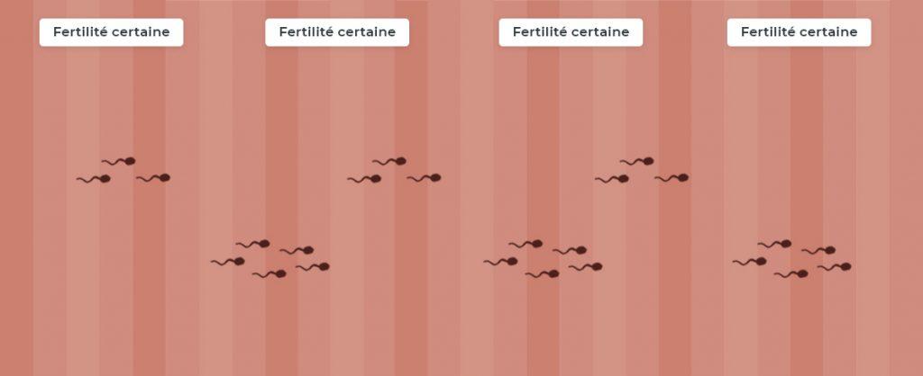 période de fécondité de l'homme