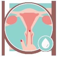 col utérus ovulation